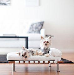 mid century modern pet beds - ModPet NYC via Atticmag