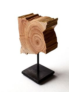 Small reclaimed Cypress slice sculpture on blackened steel base http://www.splitgrain.com/