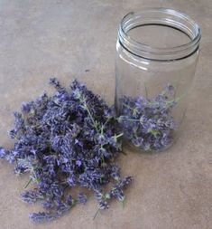 How To Make Lavender Extract  ~must try! Recipe makes one cup - will def. cut back~