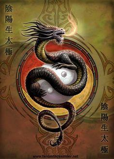 Chinese dragon - Yin Yang guardian - Anne Stokes.
