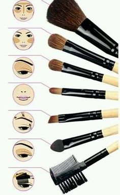 Eye Makeup tips for beginners ... Would you have been able to match the right tool/brush to the right face area? #EyeMakeup #makeup