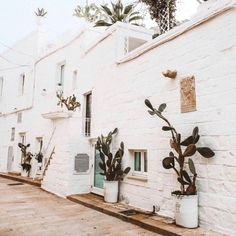 Rustic Italian streetscapes via Beach Aesthetic, Summer Aesthetic, Travel Aesthetic, Places Around The World, The Places Youll Go, Places To Go, Around The Worlds, The Beach People, Rustic Italian