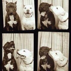 true friends! :)
