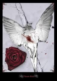 Image result for The Thorn bird legend The Thorn Birds, Angel, Lettering, Friends, Animals, Image, Amigos, Animales, Animaux