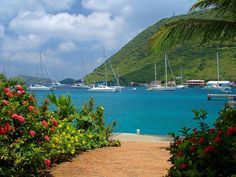 Tortola in the British Virgin Islands. The sailing is amazing!