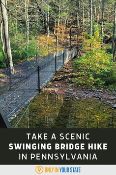 Take a short, scenic hike with a thrilling swinging suspension bridge. You'll also come across a beautiful waterfall, rock stairs, and a massive boulder on this unique Pennsylvania trail. Places To Travel, Travel Destinations, Places To Go, Suspension Bridge, Natural Scenery, Beautiful Waterfalls, Hiking Trails, Outdoor Travel, Bouldering