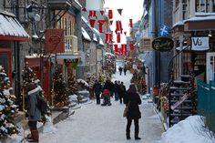 quebec city market | Quebec City Christmas Food Tours: Wine, Cheese, Beer, Chocolate ...