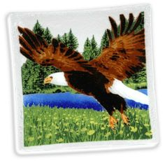 Peggy Karr Handcrafted Art Glass American Wildlife Eagle Plate, Square, 10-Inch by Peggy Karr Glass, Inc. $58.00. 100-Percent non-toxic and food-safe microwave and dishwasher-safe not for oven use. Signed by peggy karr studio, handmade in the usa. Handmade, collectible art-glass plate by peggy karr glass, approximately 10-inch square. Colored enamel pigments are hand-applied and fused between two layers of recycled glass each piece has a unique surface texture and bubbles. A...