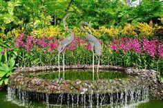 Наиболее живописным местом и достопримечательностью парка является Национальный сад орхидей.