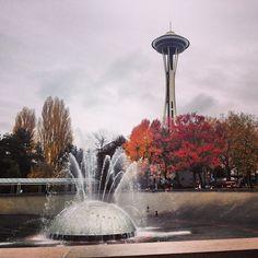 Los colores del otoño #Seattle #Washington #tourism #travel #travelnews #turismo #photooftheday