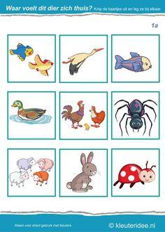 Waar voelt dit dier zich thuis 1a, kleuteridee.nl , Where the animal feels at home , free printable.