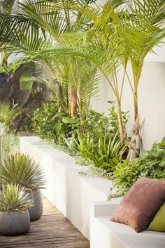 A landscape design full of life, colour & texture – Sustainable Architecture with Warmth & Texture - Garden Design about you searching for. Tropical Garden Design, Tropical Landscaping, Modern Landscaping, Backyard Landscaping, Landscaping Design, Landscaping Software, Tropical Plants, Backyard Seating, Backyard Privacy