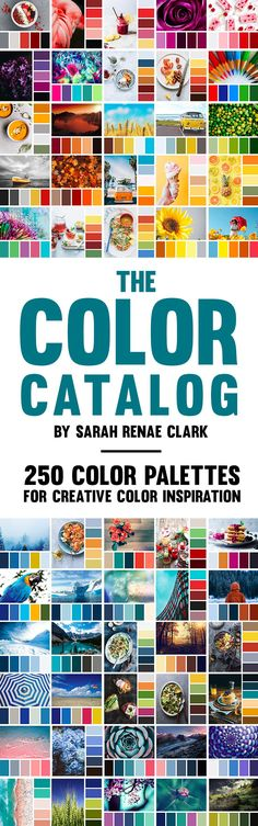 Imagine a world of color in your pocket. The ability to find the perfect color combo for any project. That's what I've created for you with The Color Catalog. Colour Pallette, Colour Schemes, Color Combinations, Color Trends, Color Patterns, Affinity Designer, Boho Home, Creative Colour, Design Seeds