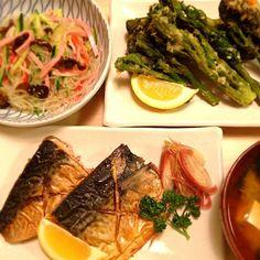 塩サバ は、hoibooさんの見て食べたくなりました(^^)たらの芽めっちゃ美味しい♡♡♡ - 80件のもぐもぐ - 塩サバ、たらの芽の天ぷら、春雨サラダ、味噌汁 by nikori