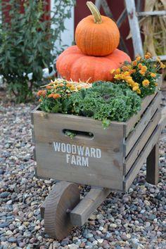 rustic-wheelbarrow-newlywoodwards-outdoor3
