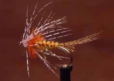 Video: How to Tie the Shakey Bealy Wet Fly | Orvis News