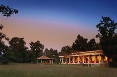 Stay at the beautiful Mahua Koti Jungle Lodge and marvel at Bandhavgarh National Park's tigers on an unforgettable, luxury andBeyond tour. King Travel, Jungle Resort, Romantic Destinations, Vacation Destinations, Madhya Pradesh, Holiday Resort, Luxury Holidays, India Travel, Hotels And Resorts