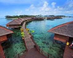 The island of Borneo has long been considered an exotic location by many. Being the third largest island in the world, many are intrigued by what it has to offer.