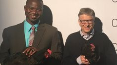 Microsoft founder Bill Gates launches a campaign to help extremely poor families in sub-Saharan Africa by giving them chickens.