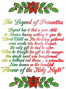 The Poinsettia Legend