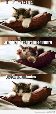 Every youngster. Every morning :)