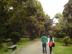 El jardín botánico en Bogotá