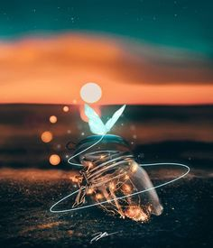 Shared by Find images and videos on We Heart It - the app to get lost in what you love. Bright Wallpaper, Lit Wallpaper, Flower Phone Wallpaper, Scenery Wallpaper, Butterfly Wallpaper, Cute Wallpaper Backgrounds, Pretty Wallpapers, Galaxy Wallpaper, Aesthetic Iphone Wallpaper