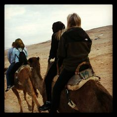 Step 1: Book a flight to Israel. Step 2: Book a ride on a camel.