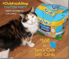 Join me at the #ClubFreshStep Twitter Party! Tuesday September 24, 2013 11 AM - 12 PM ET. $500 in prizes!