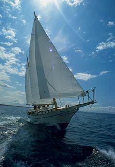 ride in a sailboat