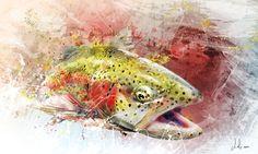 Splash Series - Rainbow Trout I