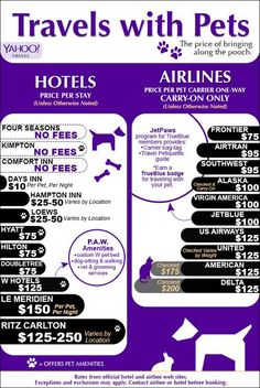 Hotels and airlines that accept pets, along with the applicable fees and amenities.