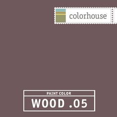 Colorhouse WOOD .05 - Magnificent and powerful- a stormy sky just before it breaks open. Set this color off with black and white tile in a powder room or add the shimmer of metallics in a dining room.