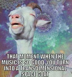 When that bass drops...
