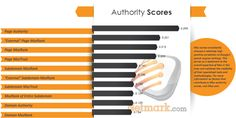 Authority Scores Ranking Factors