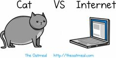 Cat VS Internet