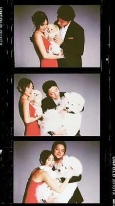 Silly Photos, Cute Photos, Types Of Relationships, Relationship Goals, Daniel Padilla, Kathryn Bernardo, Story Setting, Jadine, Romance Movies