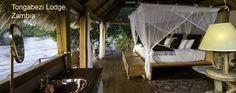 Tongabezi is a luxury safari lodge near Victoria Falls in Zambia. This award winning lodge is a romantic hideaway on the banks of the Zambezi River. Hotels And Resorts, Best Hotels, Tree House Accommodation, Villas, Safari Room, Jm Barrie, Romantic Breaks, Victoria Falls, Beach Houses