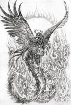 Phoenix+Bird+Drawings | My Top 10 Favorite Mythological Creatures