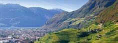 La 9° beatitudine di Bolzano