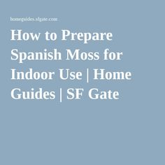 How to Prepare Spanish Moss for Indoor Use | Home Guides | SF Gate