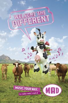 MAD | Cow Albania, Cow, Illustration, Movie Posters, Movies, Films, Film Poster, Cattle, Cinema
