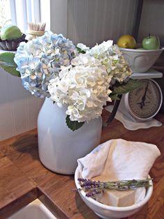 hydrangea & lavender