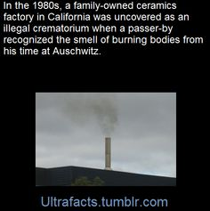 SourceFollow Ultrafacts for more facts