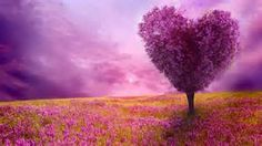 spring wallpaper and screensavers - Bing images
