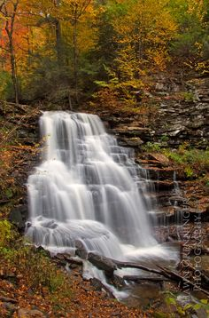 Erie Falls Ricketts Glen State Park, Pennsylvania.I want to go see this place one day.Please check out my website thanks. www.photopix.co.nz