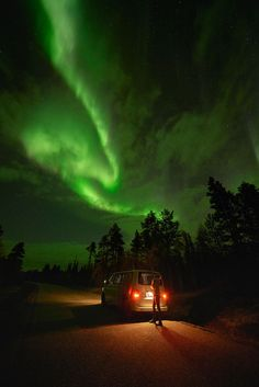 Find your adventure with us. Fox Running, Northern Lights Tours, Midnight Sun, Adventure Photography, Aurora Borealis, Wilderness, Photoshoot, Photo And Video