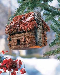 Not a gingerbread  house- but one for the birds made from birdseed