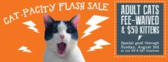 "The Great Plains SPCA in Kansas has some great Facebook Covers and poster that they use to push adoptions. This one focused on a ""Cat-Pacity Flash Sale"" where adoption fees were waived on adult cats for a weekend. Create a series of Facebook covers and start swapping them out every few weeks."