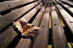RE  NASCIMENTO    Construir-se  Reinventar-se  Sempre.  Não basta a ação do tempo;  É preciso digerir os anos.    ROSE DIAS  www.rosejd.blogspot.com.br  EDA n 542.496